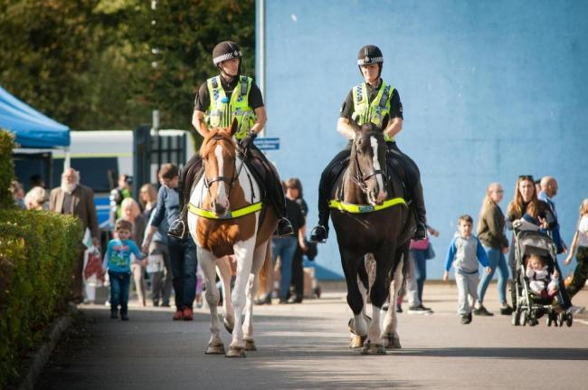 OPEN DAY: Gloucestershire Constabulary's open day. Picture: Photo: Clint Randall