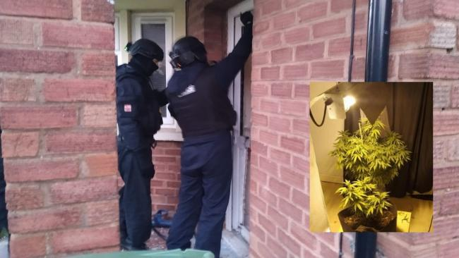 RAID: Police have been cracking down on drug use in the town