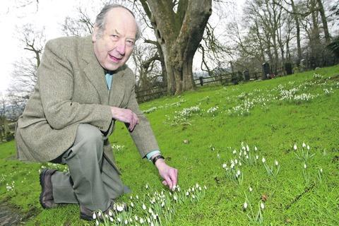 Church warden Ralph Richardson preparing for the annual snowdrop weekend at St Leonard's. Buy this photo RCR071302_a