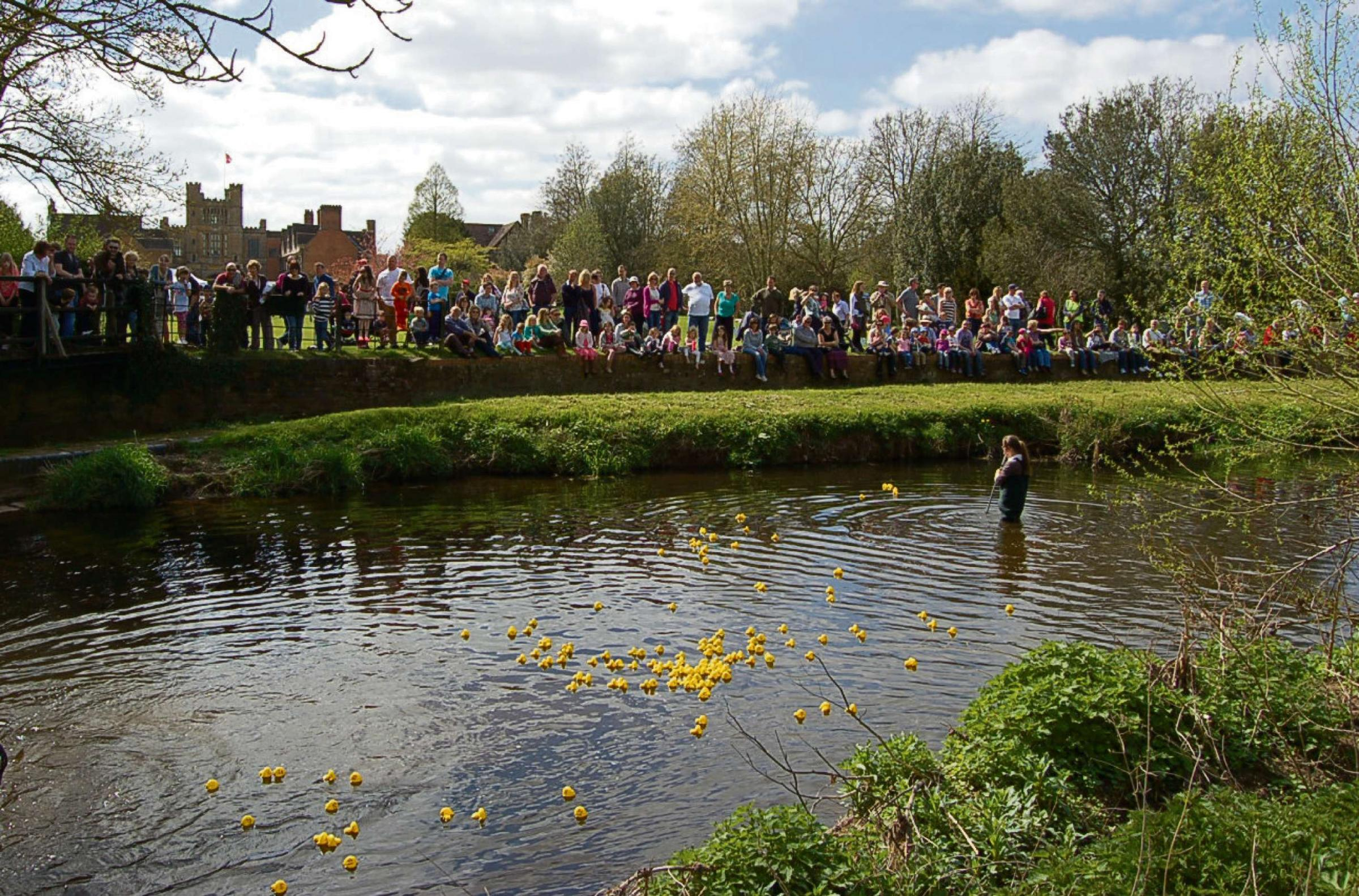 Coughton Court duck race (pho