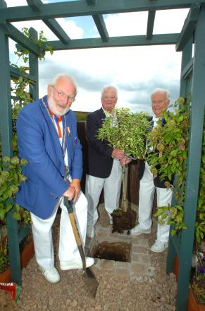Bowls England president Adie Lloyd planting the tree, with Hewell Bowling Club captain Jeff Williams and president John Tolley. Buy this photo RMM281401a from redditchadvertiser.co.uk/pictures