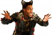 Simon Webbe as the Wolf