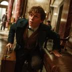 Redditch Advertiser: Eddie Redmayne unveils new trailer for Fantastic Beasts And Where To Find Them