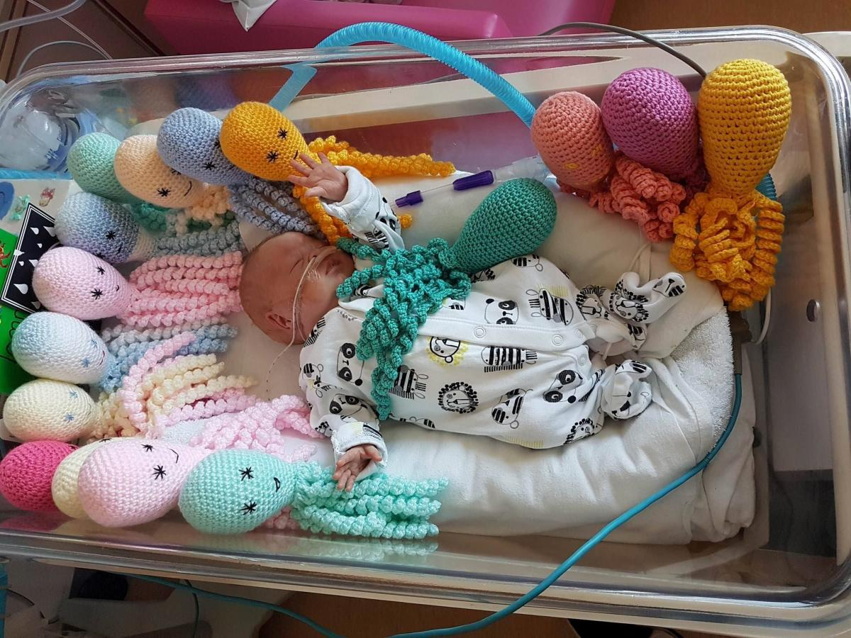 Incredible response to appeal for knitted octopuses for
