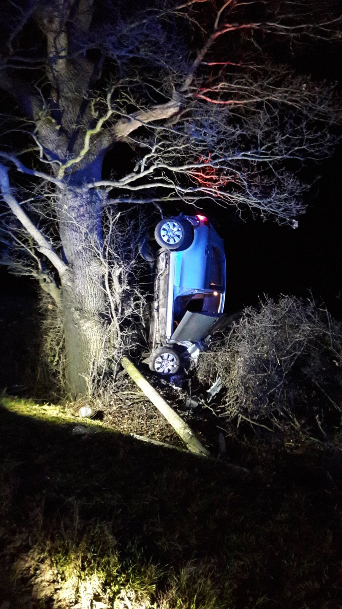 Car crashes into tree in Shropshire. Picture by @OPUShropshire